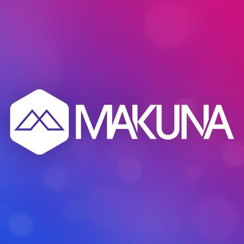 Avicii - Wake Me Up (EDX Remix) (Makuna's Extended Edit)