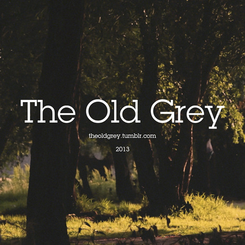 The Old Grey's avatar