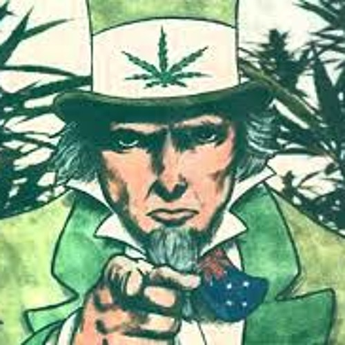 Filipe obama's avatar