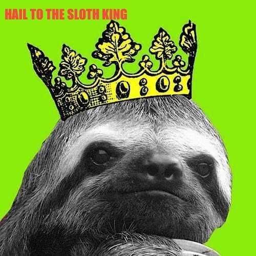Sloth King's avatar