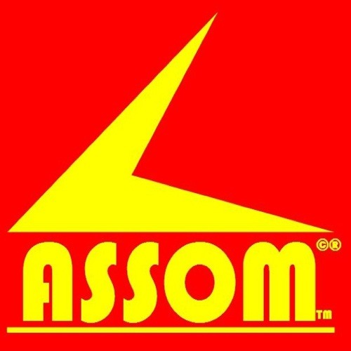 TheAssomGroup's avatar