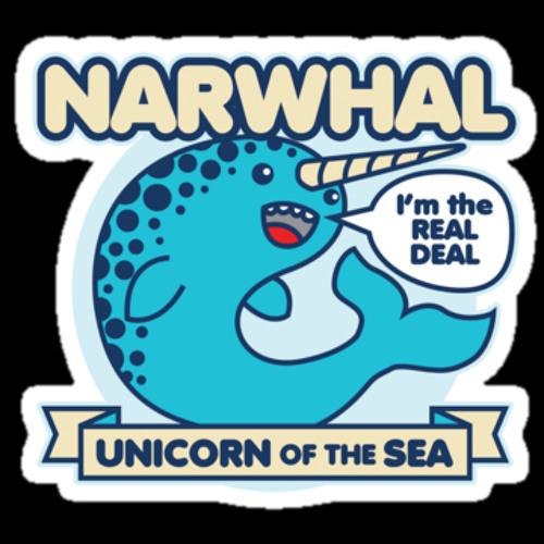 A Gnarly Narwhal's avatar