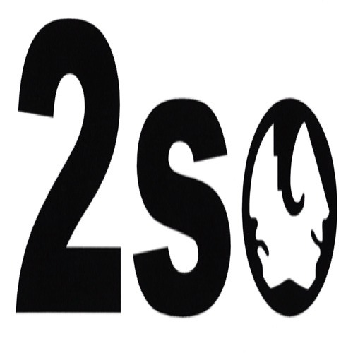 2SO recordings's avatar