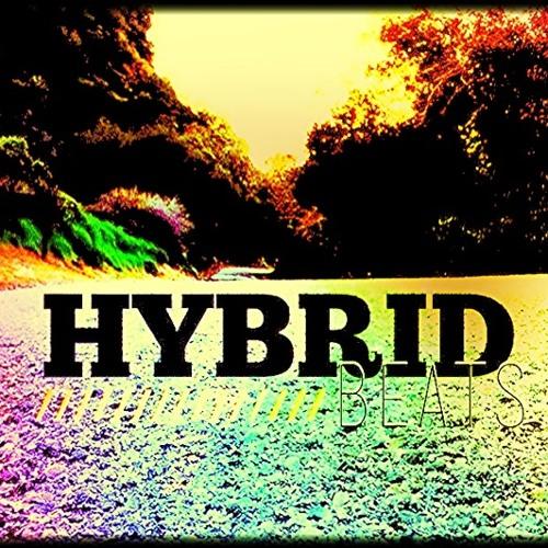 Hybrid. {beats}'s avatar