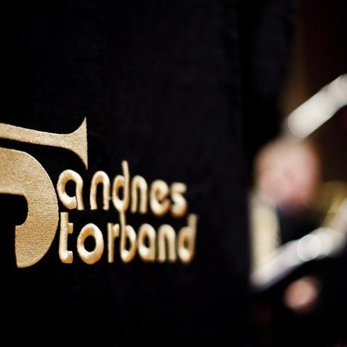 Sandnes Storband's avatar