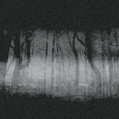 Trash Stucker - Midnight Shadow (Preview)