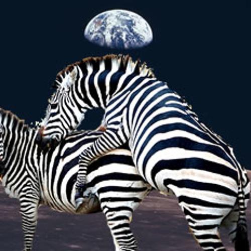 Zebra Hump's avatar