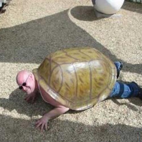 TotoDeSchildpad's avatar