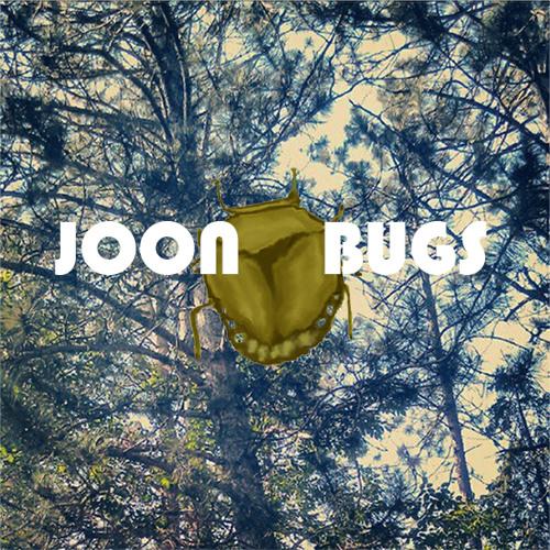 Joonbugs's avatar