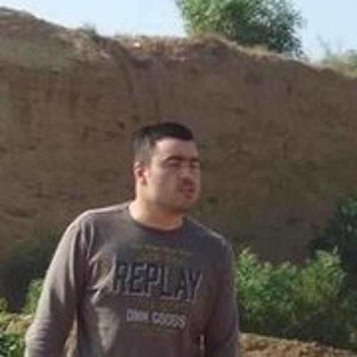 Aviran Golan 1's avatar