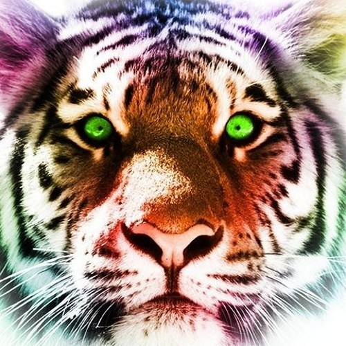 user127110096's avatar