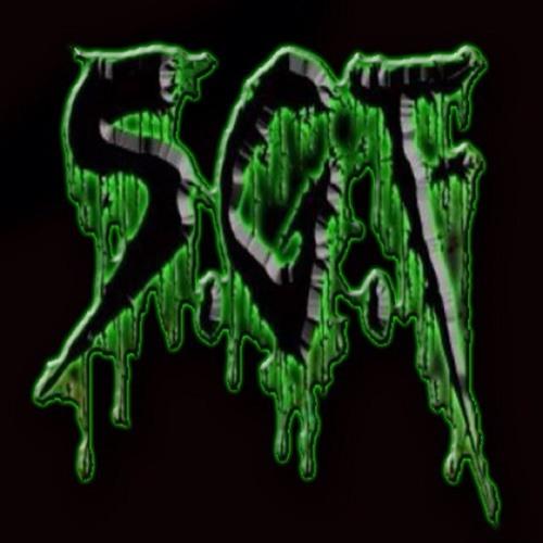 S.G.F's avatar