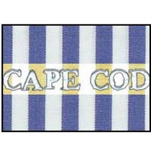 Cape Cod's avatar