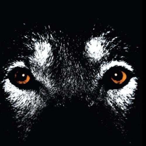 judes0716's avatar