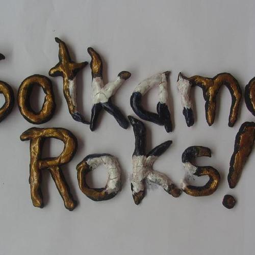 Sotkamo Roks! - sampleri's avatar