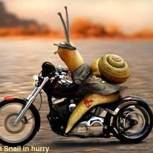 Jimmy.snail's avatar