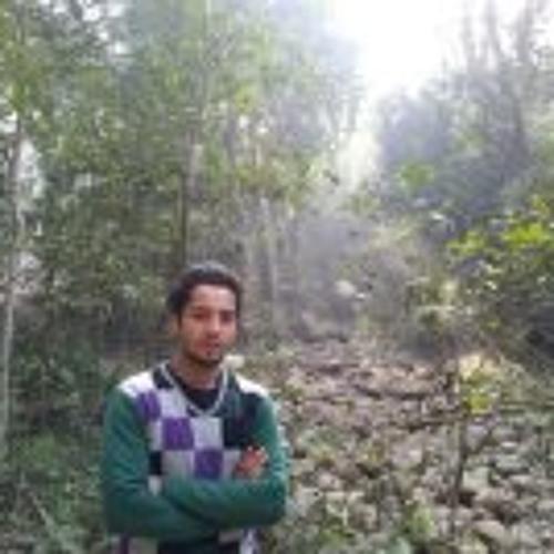 Himanshu Goswami 1's avatar