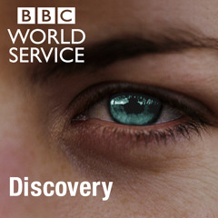 WSDiscovery