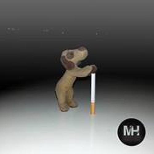 Mohamed Hussien 33's avatar