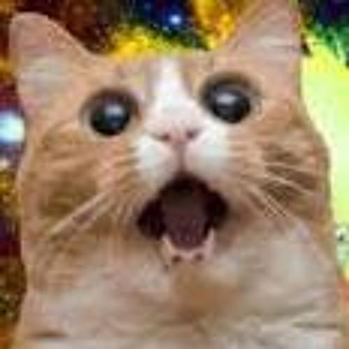 Dubstep_Kitty's avatar
