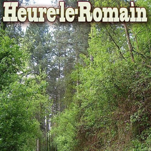 HEURE-LE-ROMAIN's avatar