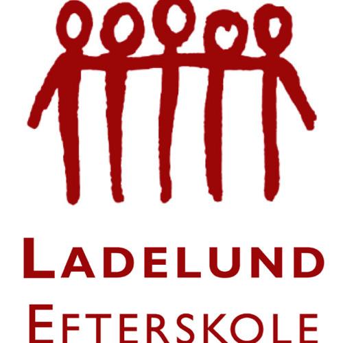 Ladelund Efterskole's avatar