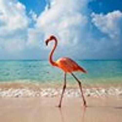 Zacharias Flamingo's avatar