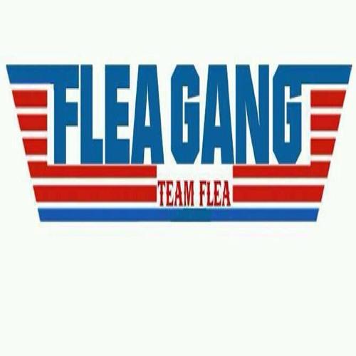 FLEA GANG MUSIC's avatar