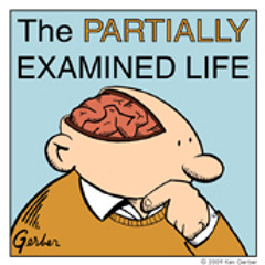 Partially Examined Life