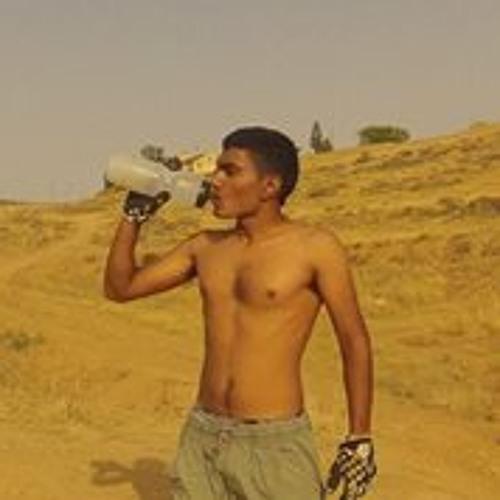Bar Halfi's avatar