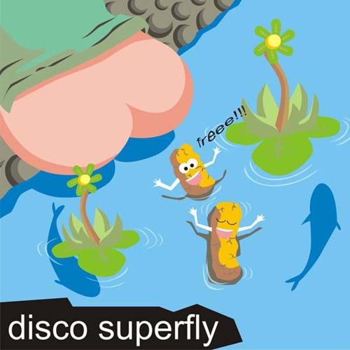 disco superfly's avatar