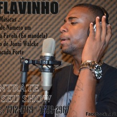 MC FLAVINHO OFIICIAL 01