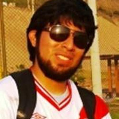 Gustavo Vizcardo's avatar