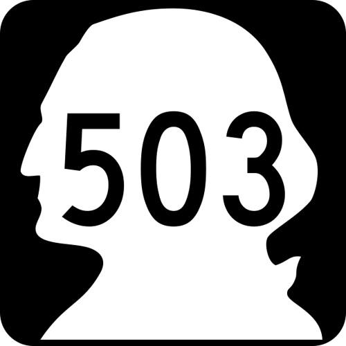 H503G's avatar