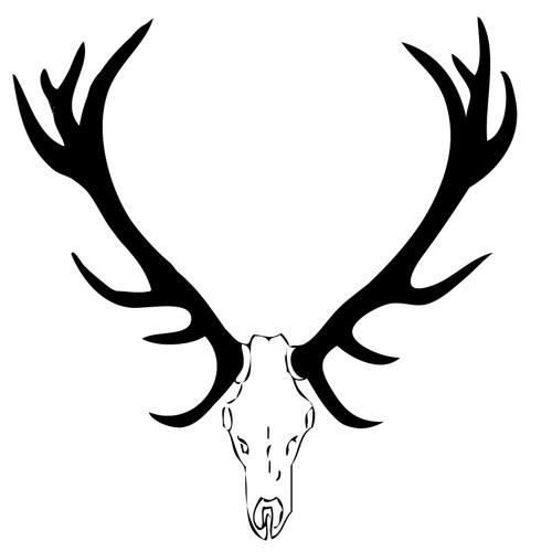 True_Rhino's avatar