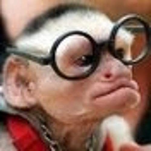 Niklas Ahr's avatar