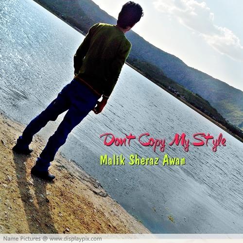 Malik Sheraz Awan's avatar