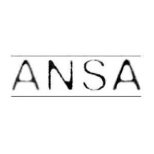 ansapunx's avatar