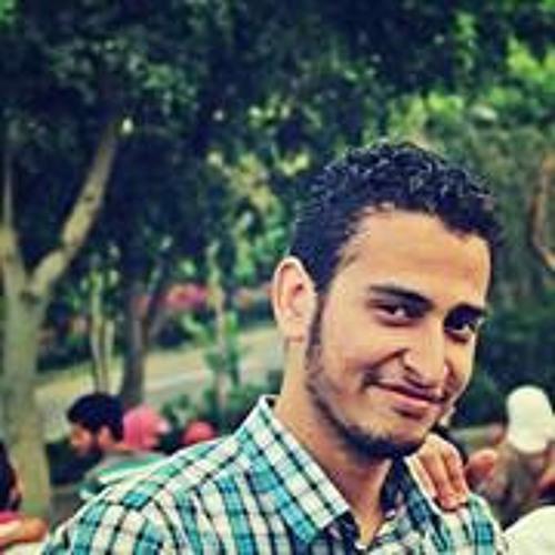 Abdel Rahman N. Almowafy's avatar