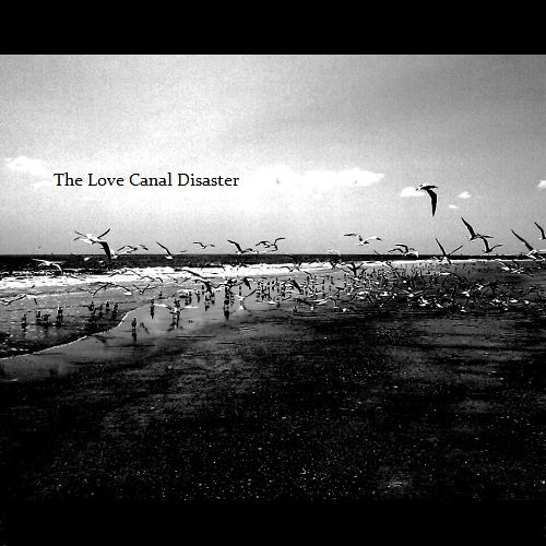 The Love Canal Disaster's avatar