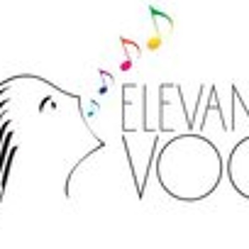Elevando Voces's avatar