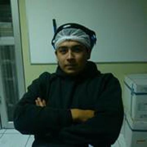 Gonzalo Andres Araya 1's avatar