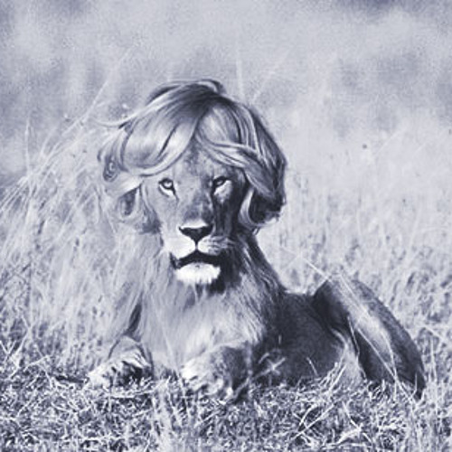 sneaky lion's avatar