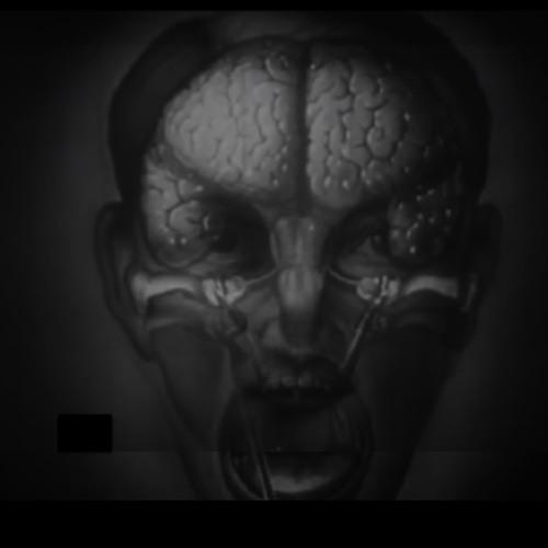 Steven Murrell's avatar