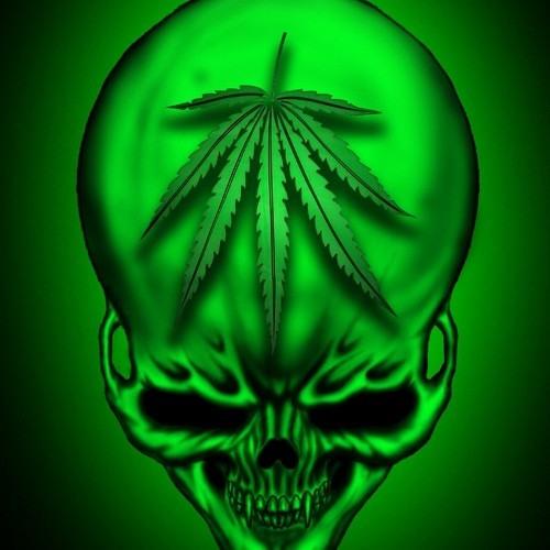noseeds420's avatar