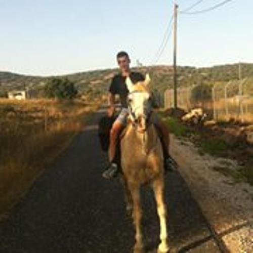 Yuval Haba's avatar