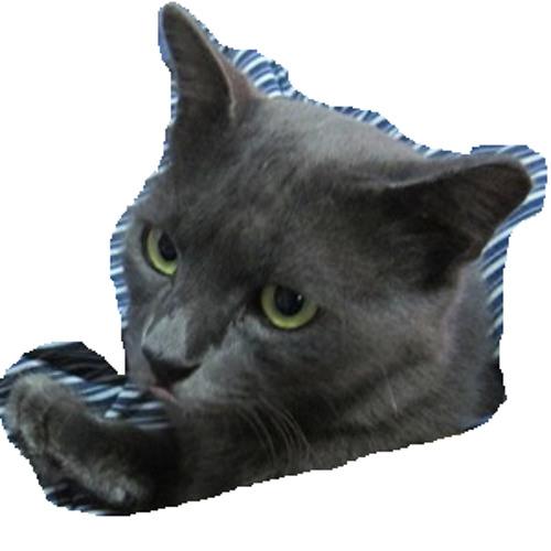 aqlh's avatar