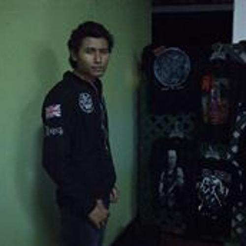 Nelson Enrique G Garcia's avatar