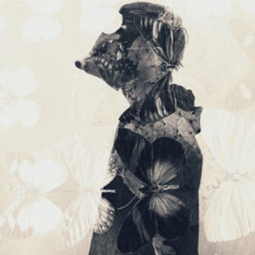 hedton inc's avatar