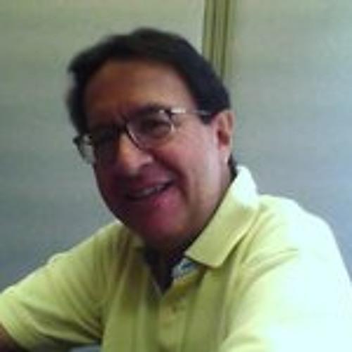 Luis Zamudio 12's avatar